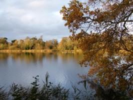 Fairhaven Woodland and Water Garden Autumn Colours