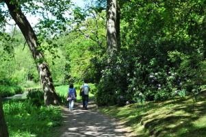 Fairhaven Woodland and Water Garden