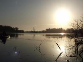 Fairhaven Woodland and Water Garden Dawn Chorus